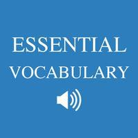 English essential vocabulary