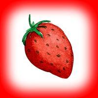 The Strawberry Garden