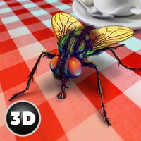 House Fly Insect Survival Simulator