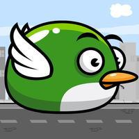 Fly Bird Fly!