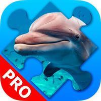 Dolphin Jigsaw Puzzles beautiful Scenery. Premium
