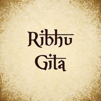 Ribhu Gita Quotes
