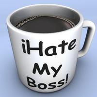 iHate Boss