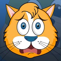 Tilty Cat : Feed & Escape from Angry Dogs