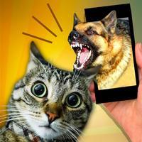 Scare Cat - Dog Prank