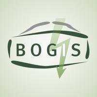Bogis