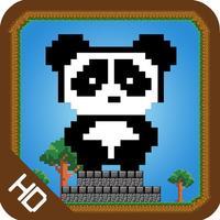 Panda Jump Amigo
