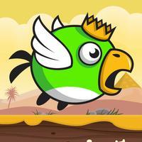 King Bird In The Desert