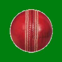 CricketCounter