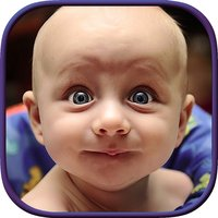 Reaction Factory - Ready To Send Reaction Pictures And Faces With Custom Meme Maker