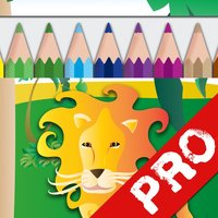Draw and Colour: The Jungle PRO