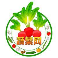 中国蔬菜网门户