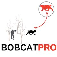 Bobcat Hunting Strategy for Predator Hunting