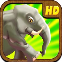 An Elephant Safari Run