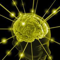 Complex Memory Trainer