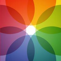Duvar - Wallpaper Live HD