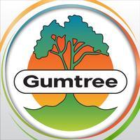 Gumtree SG