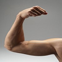 Free Body Building Tips