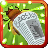 Beetles. Stop them!