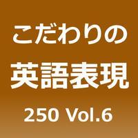 こだわりの英語表現250 Vol.6