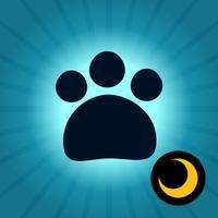 CatTron - Un gato de verdad
