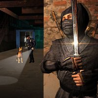 Ninja Warrior Prison Escape: A Prisoner Jail Break