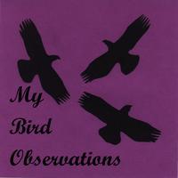My Bird Observations
