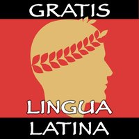 Lingua Latina Nouns: Academia