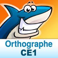 Orthographe au CE1