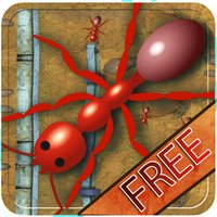 Ant colony Kingdom - Bang the ants house & infest the place with insects - Free Edition