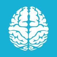 Neurology Essentials
