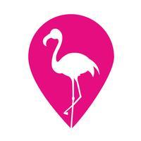 Flamingo Provider
