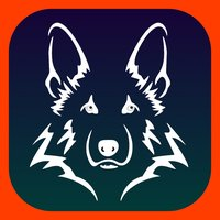 MyWatchdog Surveillance System