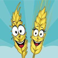 Grain Gallery AR