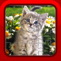 Kitten Cat Fun Jigsaw Puzzles Games for Kids and Toddlers Free