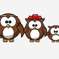 Owl Fever Stickers