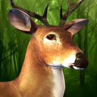 Primal Deer Hunting 2016