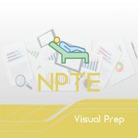 NPTE Visual Prep