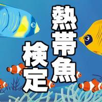 熱帯魚検定