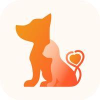 Кошки и Собаки онлайн магазин