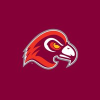 Fairmont State University Fighting Falcons