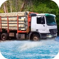 Wood Truck Hill Road Driver