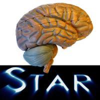 Anatomy Star - CNS (the Brain)