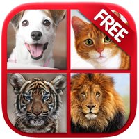 Animal Sounds & Photos for Kids