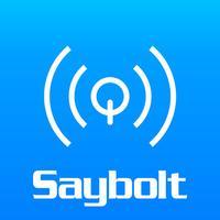 Saybolt LiveQ