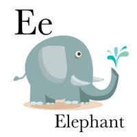Alphabet Zoop - Talking ABC Flashcards with Animal Sounds & Facts