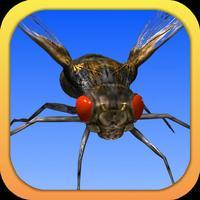Angry Flies