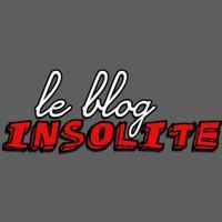 Le blog insolite