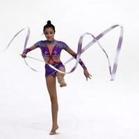 Gymnastic Skills Training