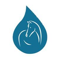 Aromatherapie voor paarden